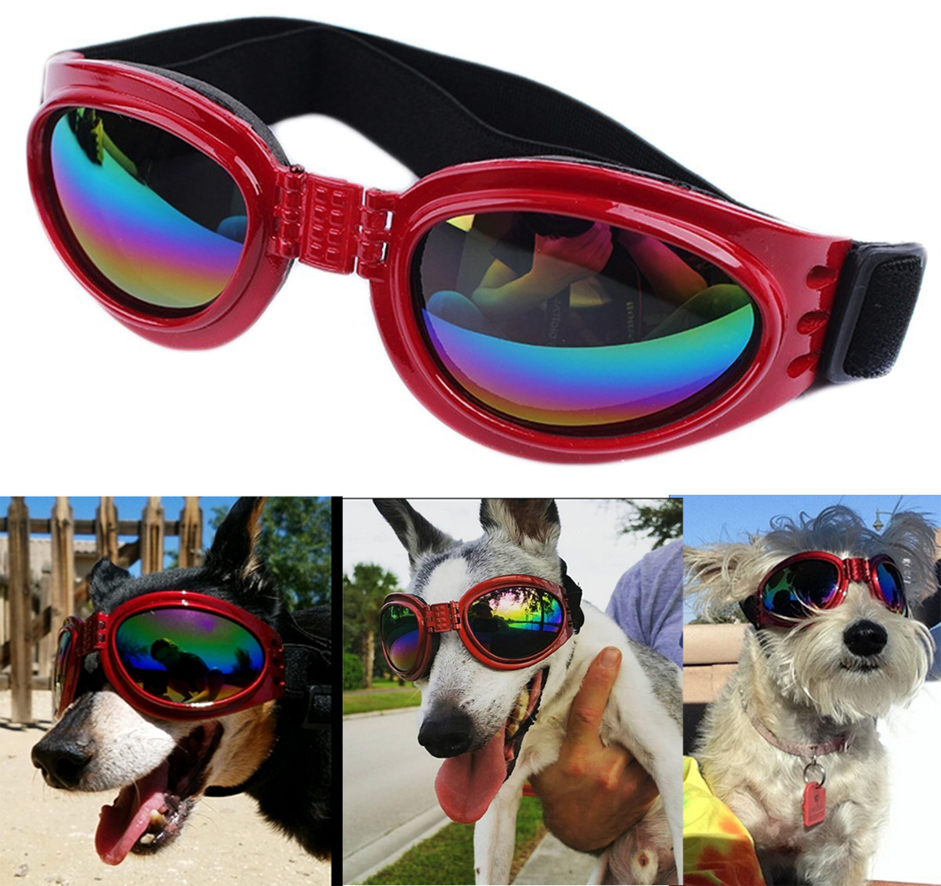 90148d19a7b QUMY Dog Sunglasses Eye Wear Protection Waterproof Pet Goggles for Dogs ...