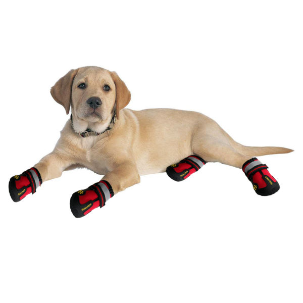QUMY Dog Boots Waterproof Shoes for